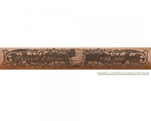 Sold Out - Barnett Shale Gun, Special Edition Marlin 1895G